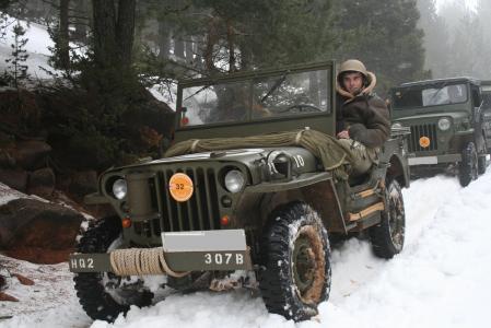 jeeps_450.JPG